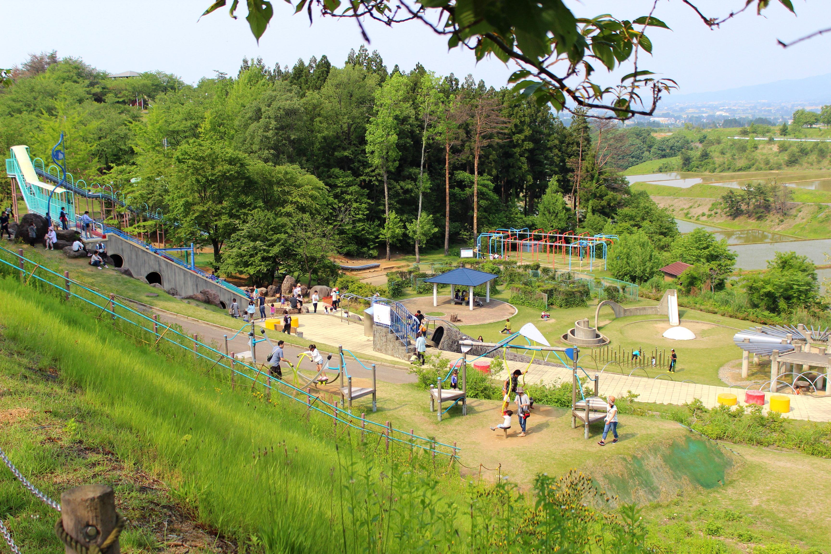 【桜ヶ池公園】遊具広場やボート乗りで優雅な休日を楽しんできた