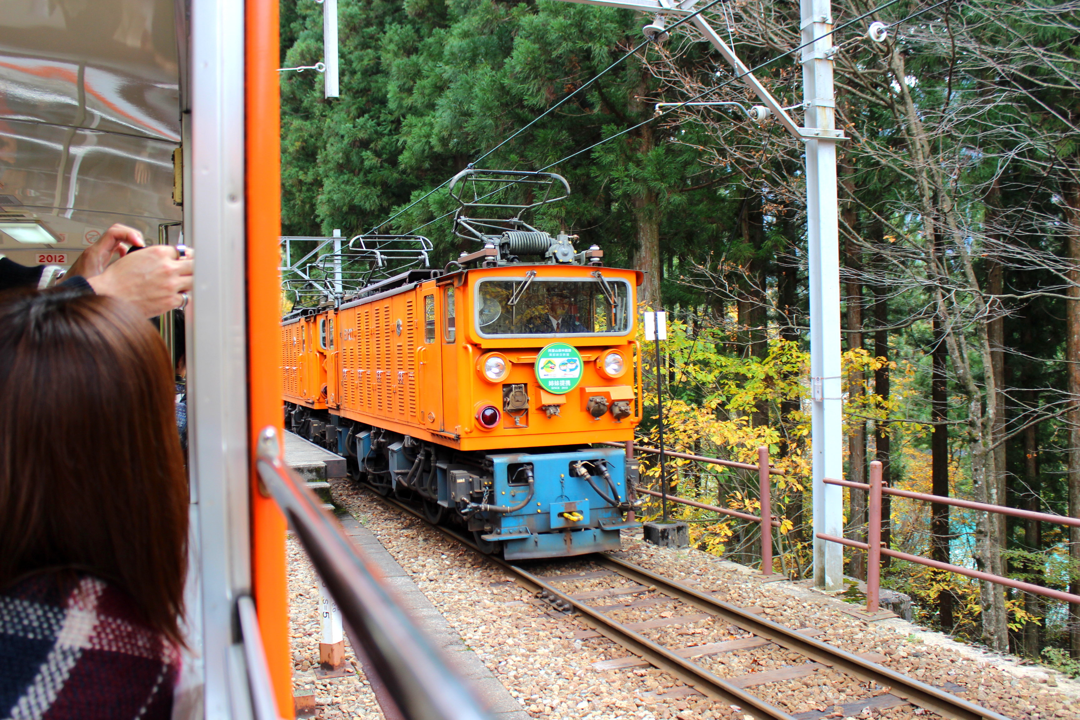 【黒部峡谷鉄道2019】トロッコ電車で絶景の紅葉を見に行ってきた