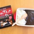 【富山ブラックカレー】33種のスパイスと漢方の入った廣貫堂のカレー