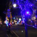 【黒部駅前イルミネーション】青と金が絡み合う一本道に行ってきた