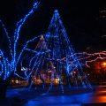 【イルミネーション滑川】駅近くの吾妻公園にカリオンの塔が光る
