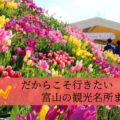 【富山のゴールデンウィーク2019】GWに行きたい観光スポットまとめ