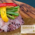 【富山のカレー屋】有名どころから穴場まで美味いスポット12選まとめ