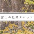 【富山で紅葉2020】人気の観光スポットから地元の場所まで5選