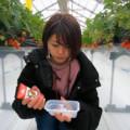 【徳徳ハウス2021】写真映え間違いなし!楽しいイチゴ狩りスポット